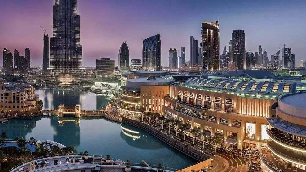 迪拜的教育体制